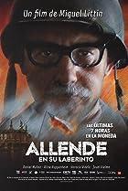 Image of Allende en su laberinto