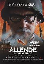 Allende en su laberinto