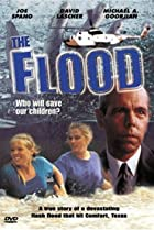 Image of The Flood: Who Will Save Our Children?