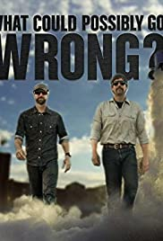 What Could Possibly Go Wrong? Poster - TV Show Forum, Cast, Reviews