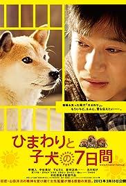 Himawari to koinu no 7-kakan Poster