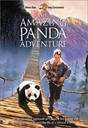 The Amazing Panda Adventure (1995)