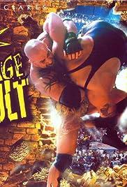 WCW: Backstage Assault Poster