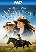 Midnight Stallion(2013)