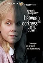 Primary image for Between the Darkness and the Dawn
