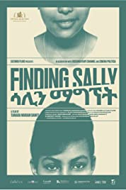 Finding Sally (2020) poster