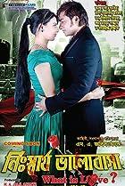 Image of Nisshartho Bhalobasha: What is Love!