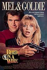Bird on a Wire(1990)