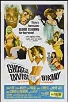 Image of The Ghost in the Invisible Bikini