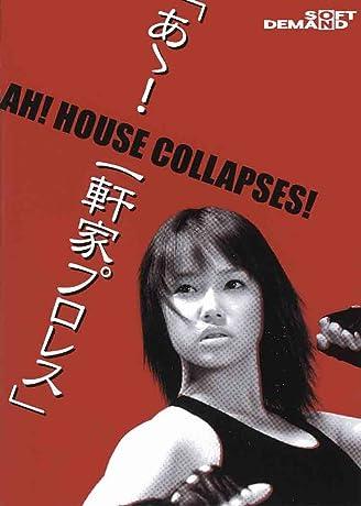 Â! Ikkenya puroresu (2004)