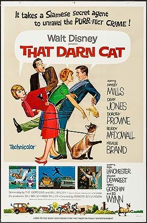 Poster Alles für die Katz