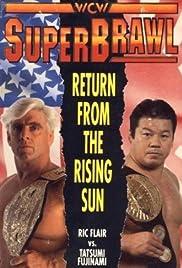 WCW SuperBrawl I Poster