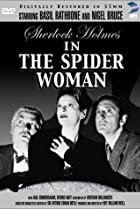 Image of The Spider Woman