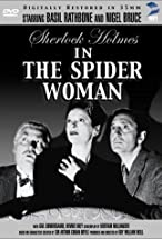 Primary image for The Spider Woman