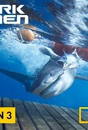 Shark Men Poster