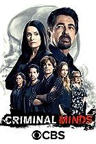 Criminal Minds (2005) Poster