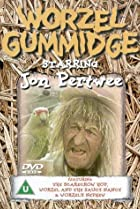 Image of Worzel Gummidge