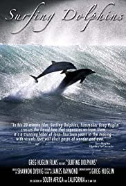 Surfing Dolphins Poster