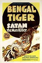 Image of Bengal Tiger