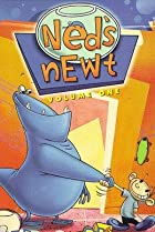 Image of Ned's Newt