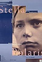 Image of Stella polaris