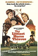 Primary image for The Littlest Horse Thieves