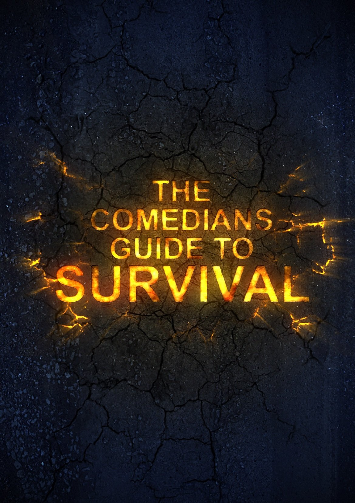 image The Comedian's Guide to Survival Watch Full Movie Free Online