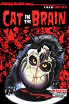 Image of A Cat in the Brain