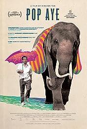 Pop Aye (2017) poster