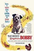 Greyfriars Bobby: The True Story of a Dog (1961) Poster