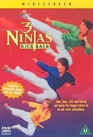 3 Ninjas Kick Back(1994) Poster - Movie Forum, Cast, Reviews