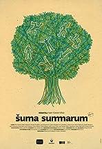 Suma summarum