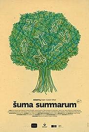 Suma summarum(2010) Poster - Movie Forum, Cast, Reviews