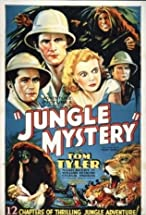 Primary image for Jungle Mystery