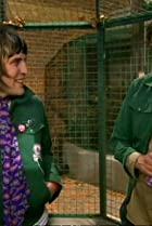 Image of The Mighty Boosh: Jungle