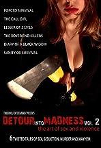Detour Into Madness Vol 2.