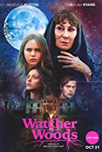 The Watcher in the Woods(2017)
