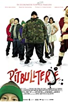Image of Pitbullterje