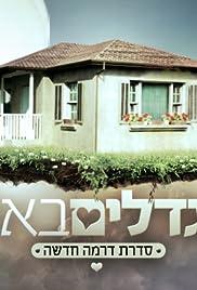 Migdalim Ba'avir Poster