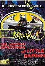 The Amazing Adventures of Little Batman