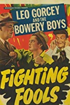 Image of Fighting Fools
