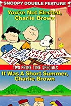 Image of It Was a Short Summer, Charlie Brown