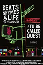 Image of Beats, Rhymes & Life: The Travels of a Tribe Called Quest
