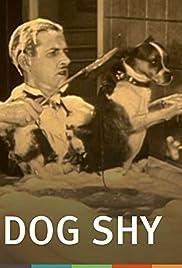 Dog Shy(1926) Poster - Movie Forum, Cast, Reviews