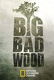 Big Bad Wood Poster