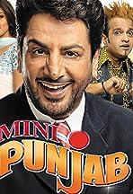 Mini Punjab