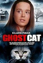 Primary image for Mrs. Ashboro's Cat