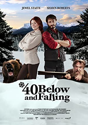 40 Below and Falling (2015)