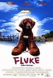 Fluke(1995) Poster - Movie Forum, Cast, Reviews
