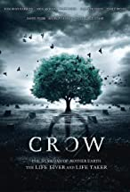Primary image for Crow